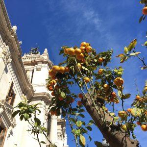 Mijn 6 favoriete hotspots in Valencia