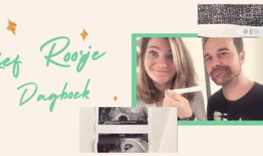Lief Roosje - dagboek - Gabriella van Rosmalen